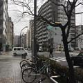 Photos: 越前堀跡(中央区新川2丁目)