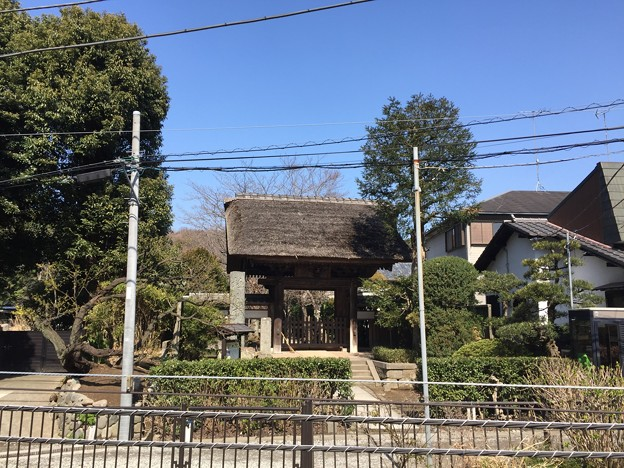 極楽寺(鎌倉市)