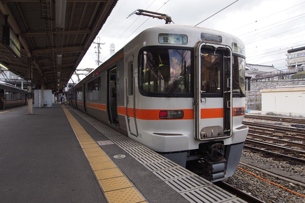 P8150939