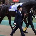 Photos: キタサンブラック(5回東京8日 11R 第36回 ジャパンカップ(GI)出走馬)