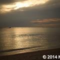 Photos: _MEL7982