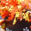Photos: ~ハロウィン仕様~