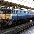 Photos: EF64 1032 2011-11-14