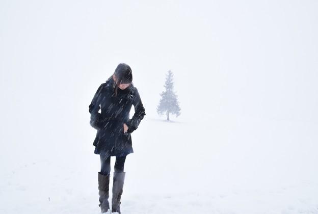 写真: 雪降る中