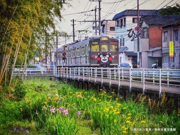 夕景のきくち電車。