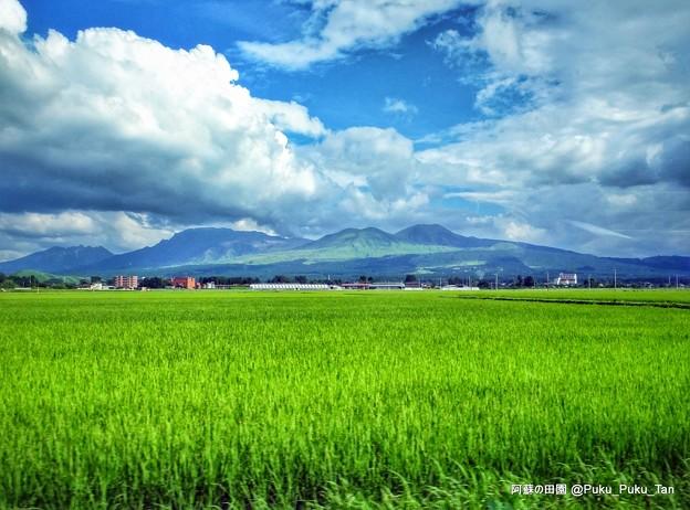 阿蘇の田園風景。