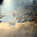 写真: 冬色パレット