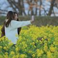 写真: 琵琶湖の春