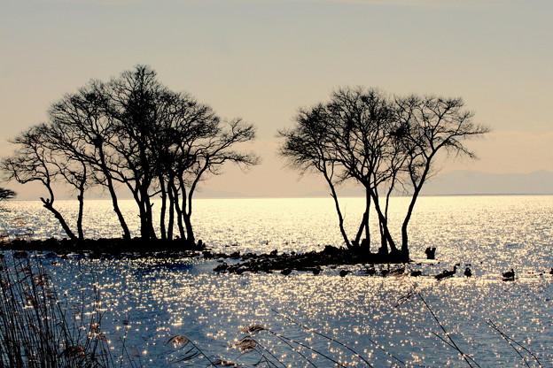光る湖(うみ)