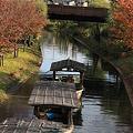 Photos: 宇治川派流の十石舟