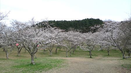 田ノ原公園(1)
