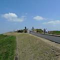 写真: 新緑の大観峰(6)