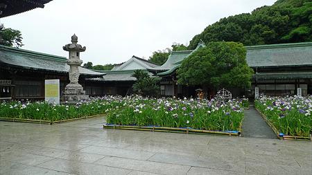 雨の宮地嶽神社(4)