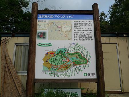 樫原湿原(12)