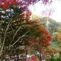 写真: 一目八景~見晴らし台への登山道(2)