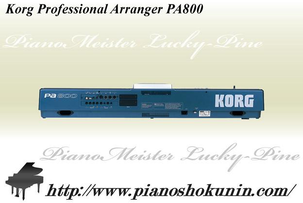 Korg Professional Arranger PA800 3