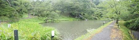 kasumigajoukouen_p02