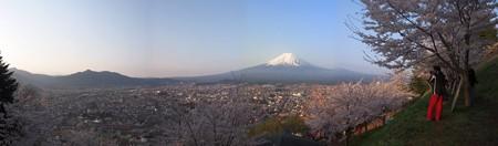 arakurayamasengenkouen_p03