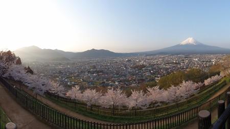 arakurayamasengenkouen_p05
