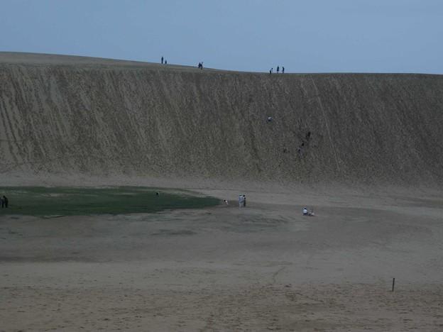 8963鳥取砂丘