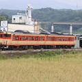 Photos: 大村線と気動車