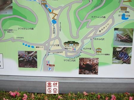 桐生自然観察の森03