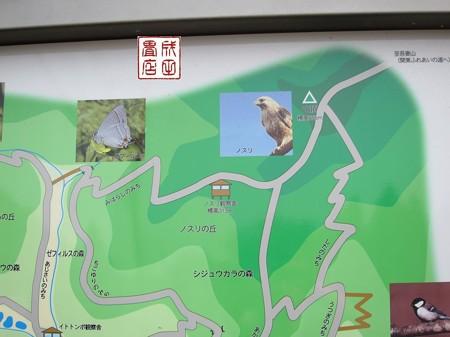 桐生自然観察の森06