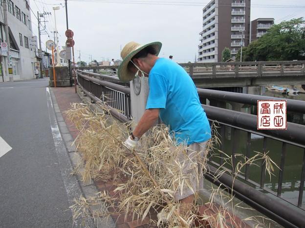 写真: 竹の撤収02