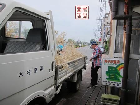 竹の撤収05