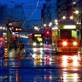 写真: ~雨情~~おはようございます~♪