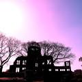 ~ドームを射す春の陽もピンク色~~(´艸`*)
