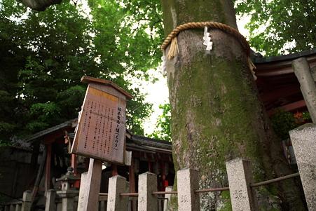 武信稲荷神社(P1000163)