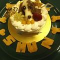 Photos: 8歳のバースデーケーキ