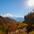 白山スーパー林道 紅葉 奥に白山(2)