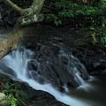 七つ滝 五の滝