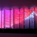 Photos: アートアクリウム「金魚の密」 日の出?(金沢21世紀美術館)