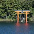 箱根神社? 鳥居
