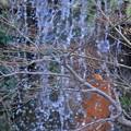 写真: 兼六園 翠滝と翡翠