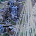 玉泉院丸庭園 段落ちの滝