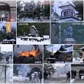 尾山神社 左義長(2)