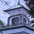 尾山神社 神門と紅梅