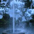 Photos: 兼六園 噴水とツララ