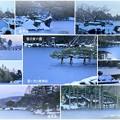 写真: 兼六園 雪の霞ヶ池