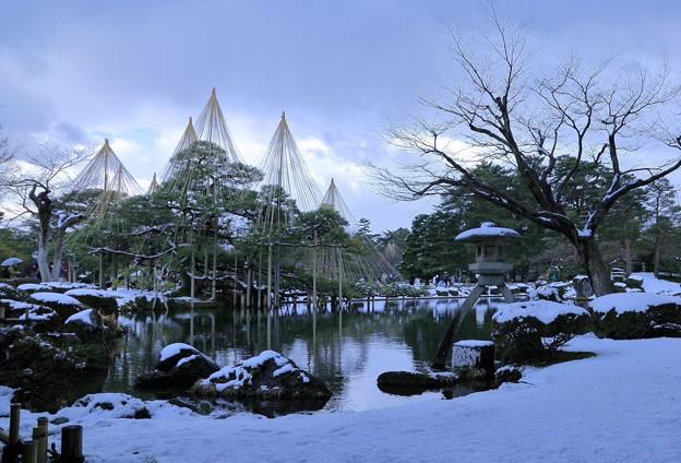 雪の兼六園 唐崎松と徽軫灯籠