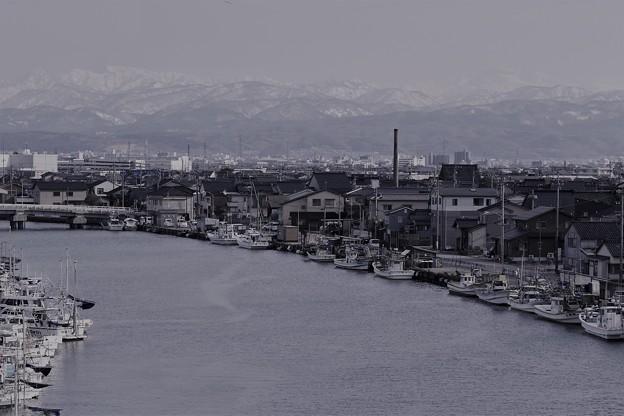 金沢港(大野漁港) 白山(2)