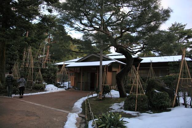 Photos: 兼六園 時雨亭 雪つり2