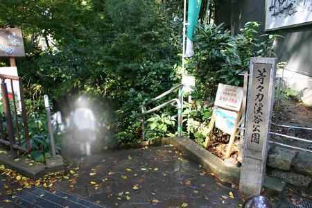等々力渓谷 等々力駅(東急大井町線)側の出入り口