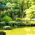 写真: 京都にて