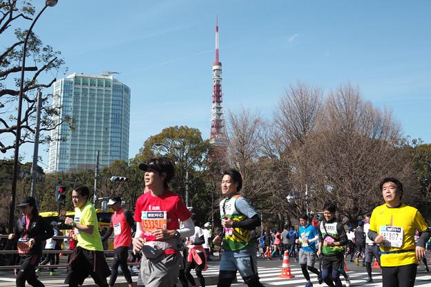 写真: 東京マラソン 芝公園