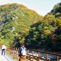 廃線跡と紅葉 生瀬~武田尾